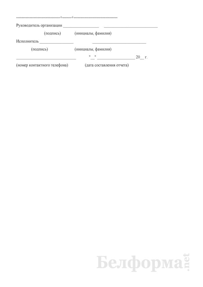Отчет о наличии технических средств хозяйства электрификации и электроснабжения (Форма № АГО-9 (годовая)). Страница 21