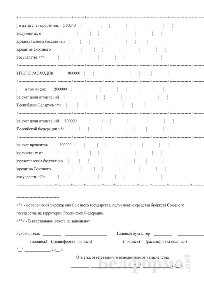 Отчет об исполнении сметы расходов по средствам бюджета Союзного государства (Форма № 2-союз). Страница 21