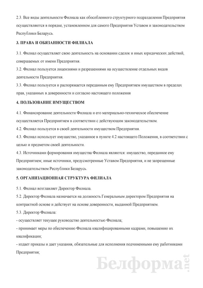 Положение о Филиале иностранного предприятия. Страница 2