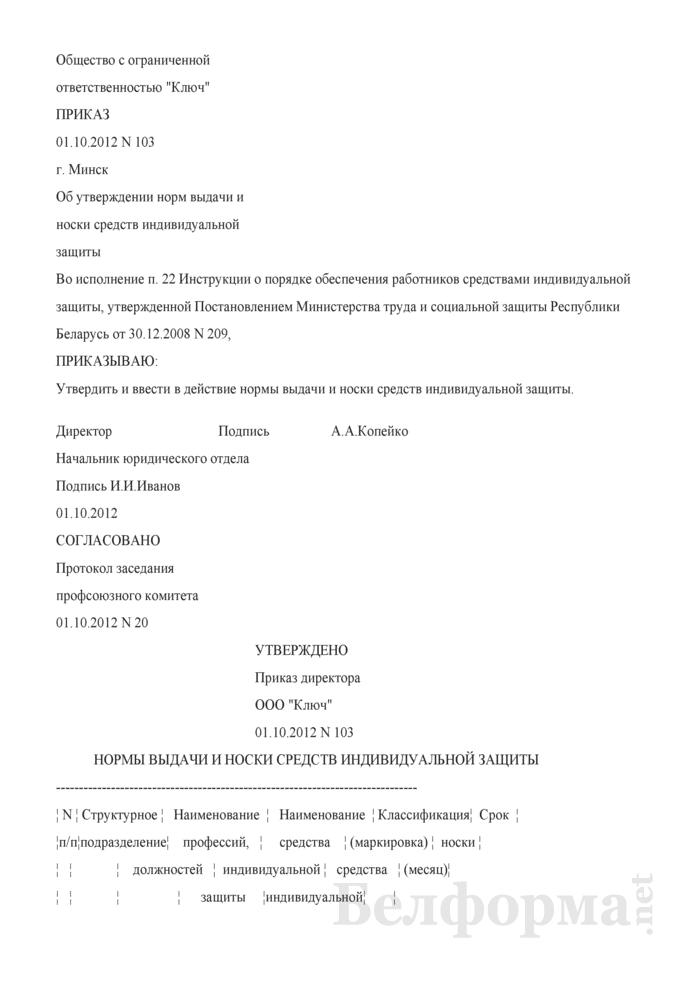 Приказ об утверждении норм выдачи и носки средств индивидуальной защиты (Образец заполнения). Страница 1