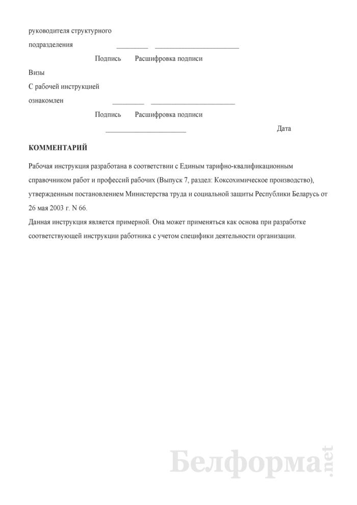 Рабочая инструкция аппаратчику производства малотоннажных продуктов (3-й разряд). Страница 3