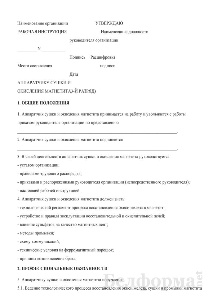 Рабочая инструкция аппаратчику сушки и окисления магнетита (3-й разряд). Страница 1