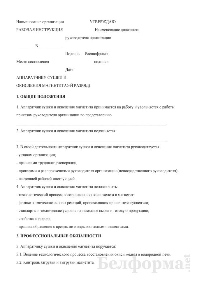 Рабочая инструкция аппаратчику сушки и окисления магнетита (5-й разряд). Страница 1