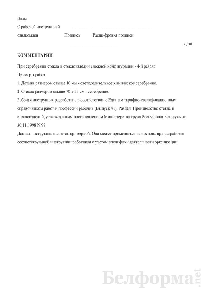 Рабочая инструкция серебрильщику (3 - 4-й разряды). Страница 3