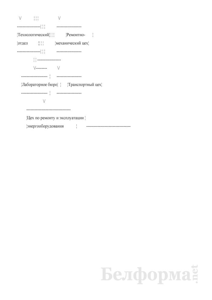 Организационная структура коммерческой производственной организации (Образец заполнения). Страница 2