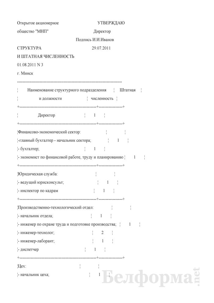 Структура и штатная численность (Образец заполнения). Страница 1