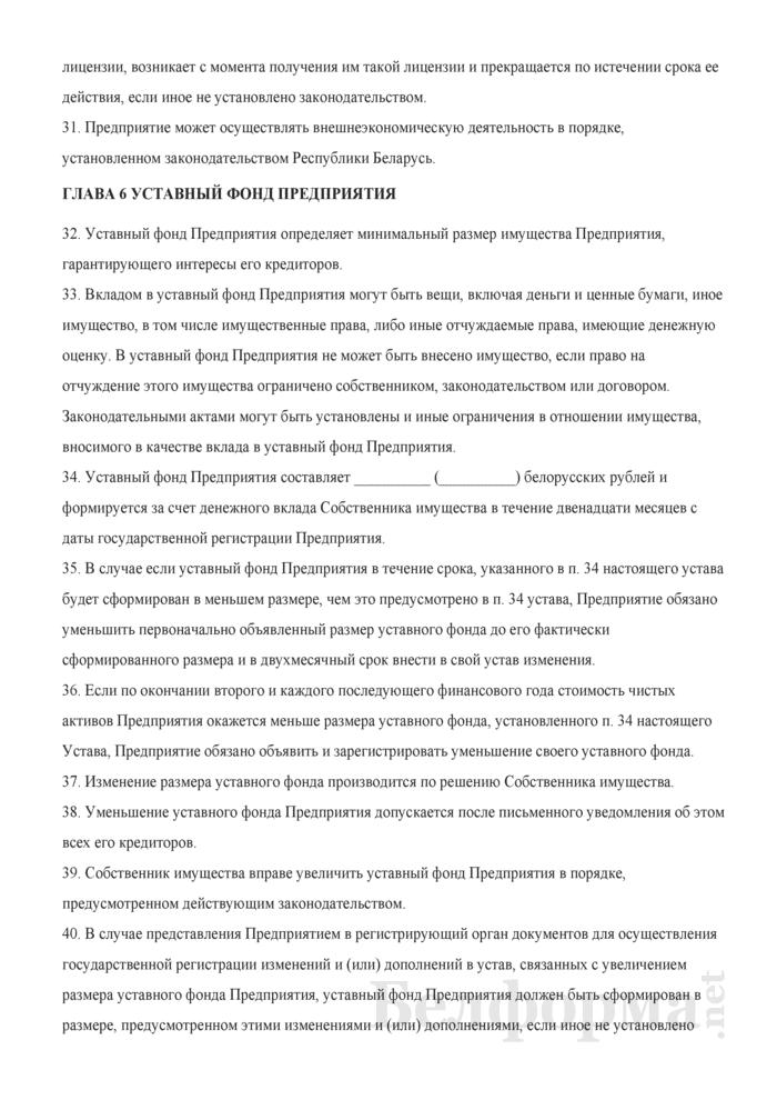 Устав Частного унитарного предприятия. Страница 4