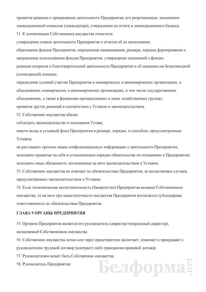 Устав Частного унитарного предприятия. Страница 8