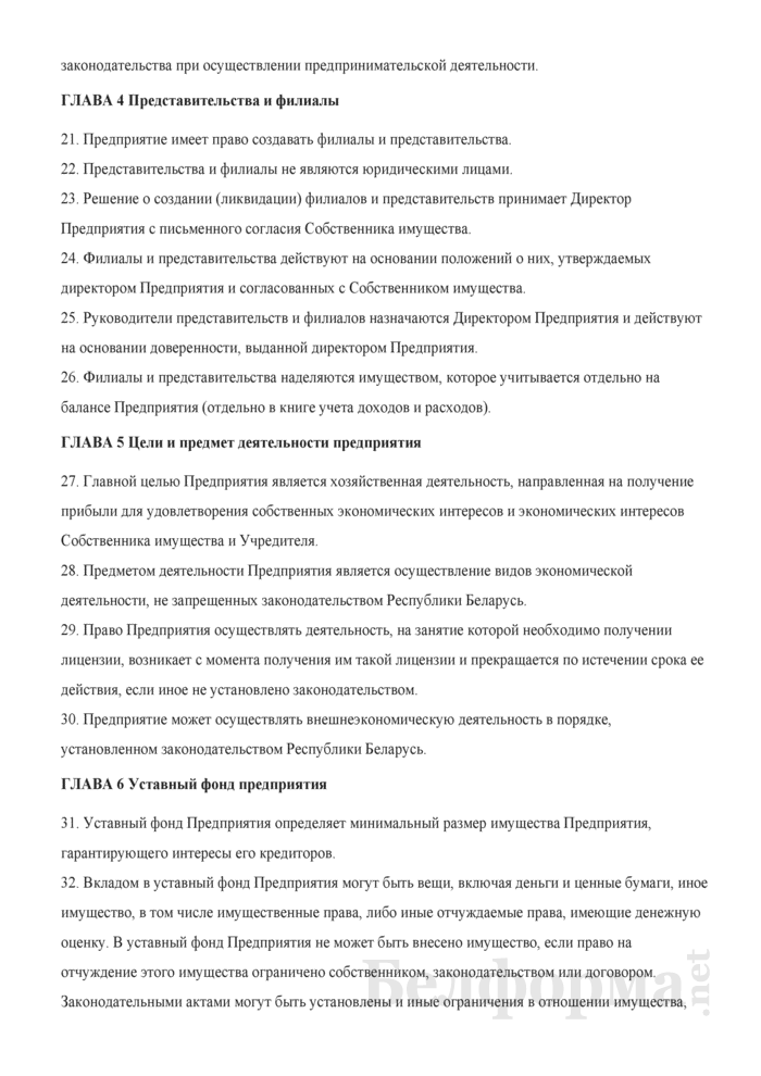 Устав Частного дочернего унитарного предприятия по оказанию услуг. Страница 3
