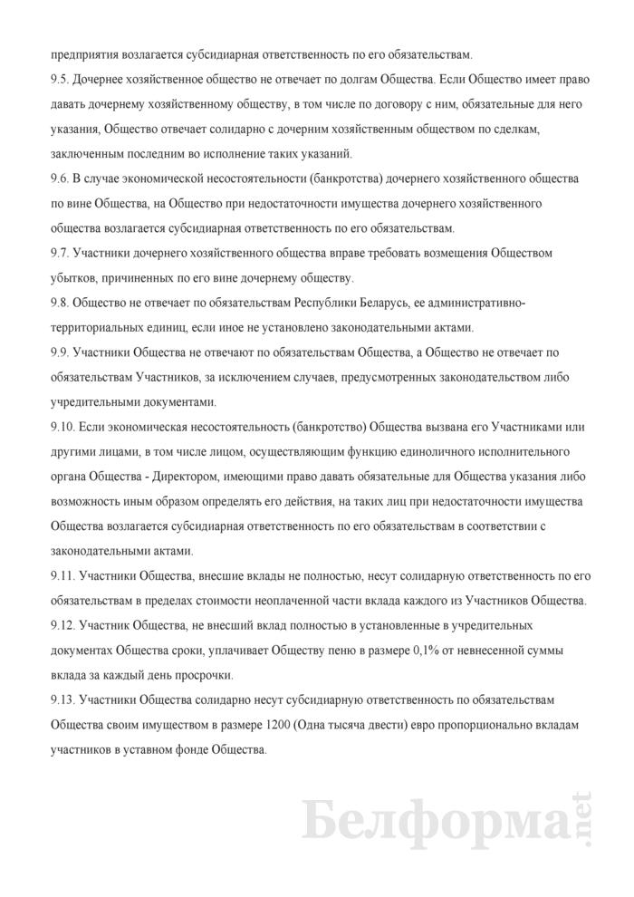 Устав общества с дополнительной ответственностью. Страница 12