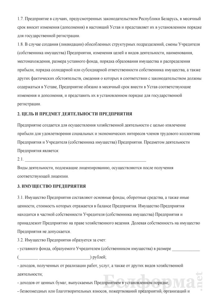 Устав производственно-коммерческого частного унитарного предприятия. Страница 2