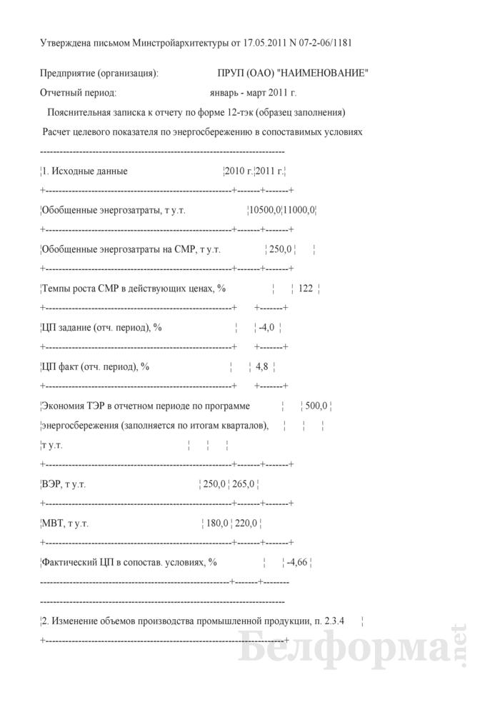 Пояснительная записка к отчету по форме 12-тэк (образец заполнения). Страница 1