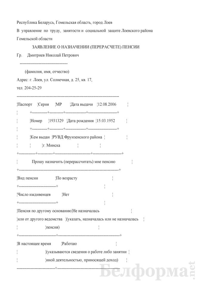 Заявление о назначении (перерасчете) пенсии (Образец заполнения). Страница 1