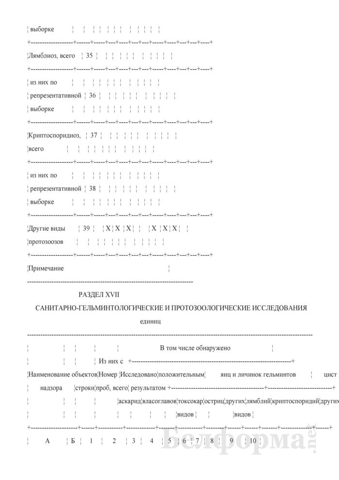 Сведения о противоэпидемических мероприятиях (годовая). Страница 24